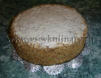рецепт бисквитный торт